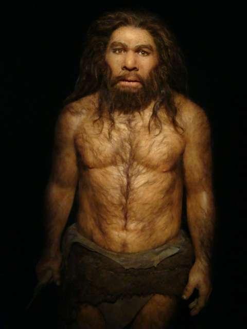 Homme neandertal